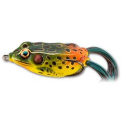Hollow Body Frog  55